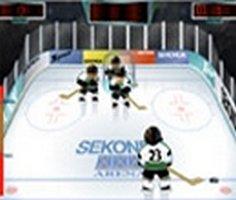 Ice Hockey Practice Game